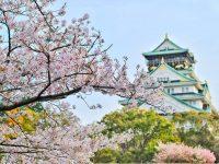 Japan Spring Tour, Beautiful Season